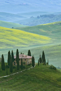 The Belvedere or beautiful view is seen from a hill near the town of San Quirico d'Orcia by Danita Delimont