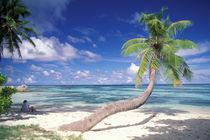 Seychelles by Danita Delimont