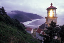 A foggy day on the Oregon coast at the Heceta Head Lighthouse von Danita Delimont
