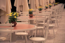 Cafe tables in Chateau Park von Danita Delimont