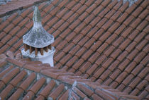Chimney and red tile roof detail von Danita Delimont