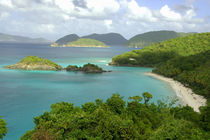 Overview of Trunk Bay von Danita Delimont