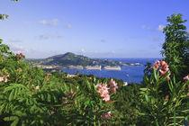 Charlotte Amalie von Danita Delimont