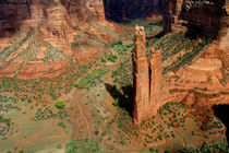 Spider Rock Overlook von Danita Delimont