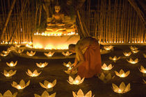 Monks lighting khom loy candles and lanterns for Loi Krathong festival by Danita Delimont