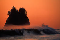 Sea stack and mist over waves at sunset on Second Beach von Danita Delimont