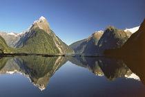 Fiordland von Danita Delimont