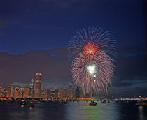 Fourth of July fireworks over Monroe Harbor von Danita Delimont