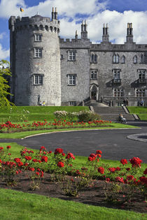 View of Kilkenny Castle by Danita Delimont