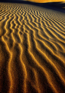 Dune pattern abstract by Danita Delimont