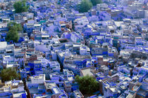 Jodhpur: Blue City of Jodhpur seen from Meherangarh Fort by Danita Delimont