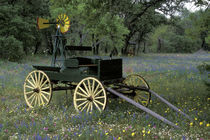 Old wagon and wildflowers by Danita Delimont