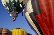 Walla Walla Hot Air Balloon Stampede by Danita Delimont