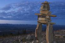 Northern Yukon von Danita Delimont