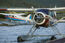Ketchikan Seaplane Airport by Danita Delimont