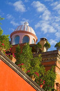 The dome of a church above the rooftops lined with flower pots von Danita Delimont
