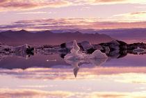Landscape by Danita Delimont