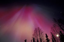 Red and green Northern Lights above central Alaska by Danita Delimont
