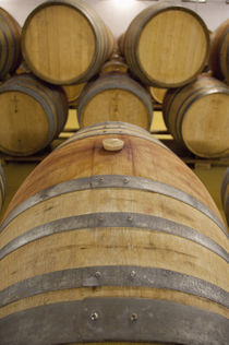 Typical oak wine barrels in cellar von Danita Delimont