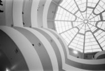 New York City: The Guggenheim Museum View looking Up by Danita Delimont