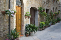 Flower pots and potted plants decorate a narrow street in a Tuscany village von Danita Delimont