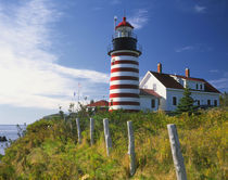 West Quoddy Head Lighthouse on the easternmost point of the United States mainland von Danita Delimont