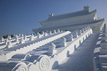 Harbin International Sun Island Snow Sculpture Art Fair--Forbidden City made of snow and ice slide by Danita Delimont