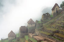 South America Peru Macchu Picchu by Danita Delimont