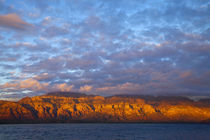 Morning light greets the Sierra de la Giganta Mountain Range along the Gulf of California near Loreto Mexico von Danita Delimont