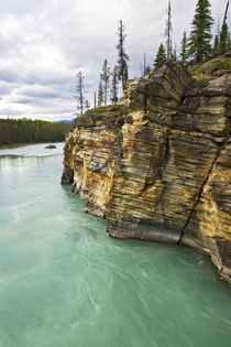 Athabasca River by Danita Delimont