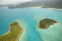 Aerial View above the Whitsunday Islands von Danita Delimont
