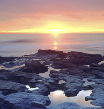 Sunset Cliffs tide pools on the Pacific Ocean reflecting the sunset von Danita Delimont