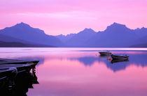 Lake McDonald at dawn by Danita Delimont