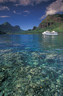 Cruise ship Paul Gaugin and clear reef view by Danita Delimont