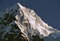 In Nepal by Danita Delimont