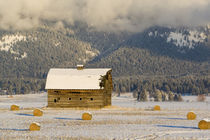 Rustic barn and hay bales after a fresh snow in the Mission Valley of Montana von Danita Delimont