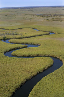 Arial view Okavango river von Danita Delimont
