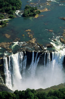 The Falls from above by Danita Delimont