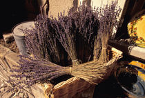 Dried lavender bunches for sale by Danita Delimont