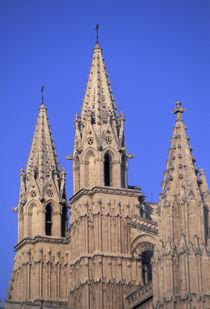 Palma Cathedral von Danita Delimont