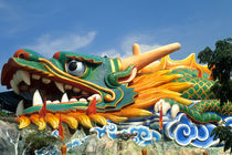 Famous Dragon at Haw Par Villa in Singapore Asia von Danita Delimont