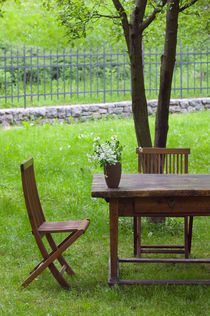 Spodnja Idrija: Table on Grounds of 14th Century Hotel Kendov Dvorec von Danita Delimont