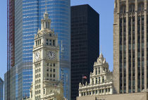 IBM Building and Tribune Tower von Danita Delimont