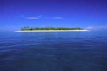 Tavarua Island Fiji by Danita Delimont