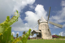 Working windmill built in 1814 von Danita Delimont