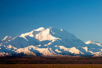 McKinley in Denali National Park by Danita Delimont