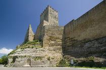 Castello di Lombardia von Danita Delimont