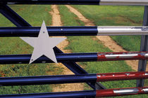 Texas flag painted on metal gate by Danita Delimont