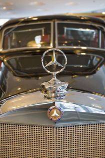 Detail of Mercedes star hood ornament by Danita Delimont
