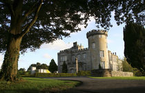 The Dromoland Castle side entrance von Danita Delimont